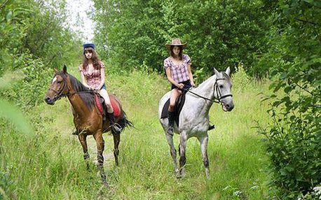 Hodinová vychádzka na koni v sprievode inštruktora v lužných lesoch neďaleko Bratislavy len za 6,50 €