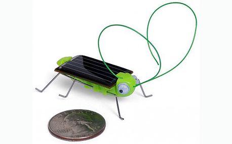 Nenáročný domácí mazlíček - luční kobylka na solární energii udělá radost dětem i dospělým!