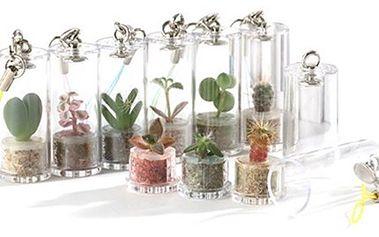 Darujte rostlinku Pet Plant. Udělejte radost netradičním dárkem. 189 Kč za 1 rostlinku Pet Plant dle výběru, můžete si ji pověsit třeba na klíče a až vyroste, přesaďte ji do květináče.