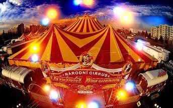 Vstup pro 1 dítě v doprovodu dospělého na představení Národního Cirkusu Originál Berousek v novém turné v roce 2012! Cena 200 Kč z původních 350!