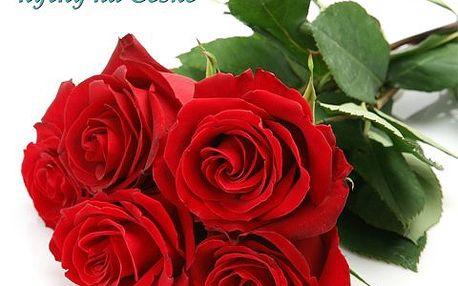 Kytice z 5 růží pro radost! Krásná kytice z 5 růží a doplňkové zeleně udělá radost, ať je či není svátek!