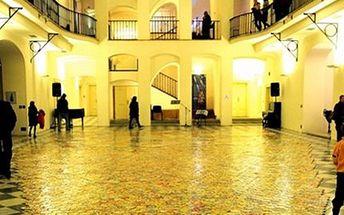 2x vstup na unikátní VÝSTAVU Loukamosaic- mozaiková louka Překrásné dílo skupinových mozaik Vás ohromí. Výstavu můžete zhlédnout spolu s dalšími expozicemi v Severočeském muzeu.