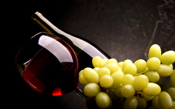 Jen 233 Kč za vstup na 15. ročník Veletrhu vín 2012 s degustační ochutnávkou!