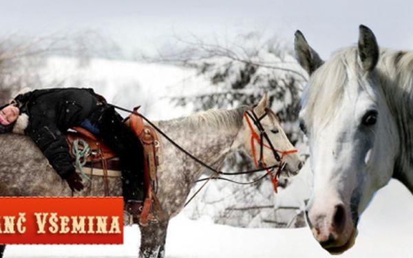 Hodinová vyjížďka na koni v přírodě pod dohledem instruktora za neodolatelnou cenu 179 Kč! Nejkrásnější pohled na svět je z koňského hřbetu!