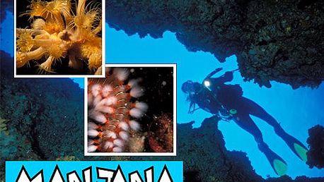 Kurz potápění v Chorvatsku! Zpestřete si vaši vlastní dovolenou kurzem potápění a získejte mezinárodní licenci s 50% slevou!