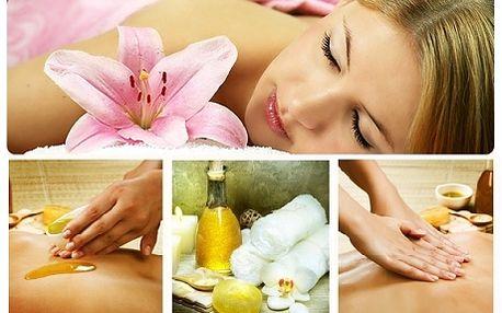 150 Kč za 30minutovou masáž dle vlastního výběru! Amma masáž, antistresová masáž, sportovní masáž zad a šíje, detoxikační medová nebo snad čokoládová masáž? Kterou vyzkoušíte jako první? Těší se na Vás v Masážní studio Lucida v Ústí nad Labem.