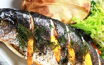 299 Kč za DVA pstruhy na roštu s libovolnou přílohou, láhev moravského vína a karafu vody. Pochutnejte si na čerstvém rybím mase!