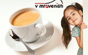 89 Kč za cokoli z nabízeného menu kavárny V Mraveništi a vstup pro dítě do dětského koutku!