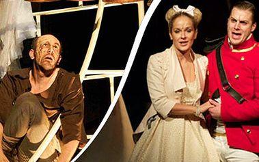 2 vstupenky na muzikál QUASIMODO se skupinou DEAMAN 1+1 vstupenka zdarma na muzikál Quasimodo v divadle Hybernia. Užijte si představení s J. Kornem, O. Rumlem nebo vítězem Česko Slovensko má talent-Deaman.