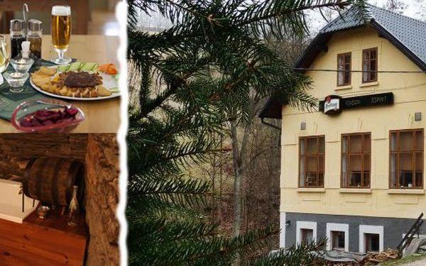 Nechte se hýčkat a užijte si příjemný pobyt s POLOPENZÍ pro jednu osobu v Krkonoších v pensionu Esprit na 2, 3 nebo 5 nocí s fantastickou slevou s platností poukazu až do konce listopadu 2012