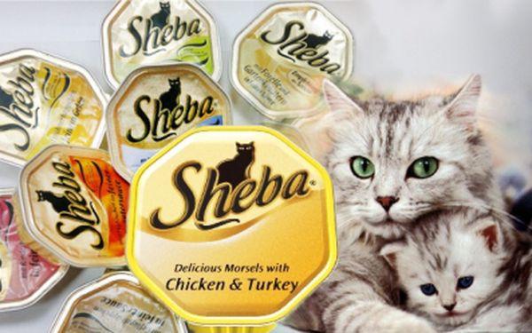 Vaničky SHEBA - nyní jen 14 Kč za jednu! Dopřejte i Vy své kočce kompletní a vyvážené krmivo vyráběné z kvalitních surovin, které si každá kočka zamiluje.