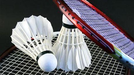 1 hodina BADMINTONU v kryté sportovní hale Hodina badmintonu v kryté sportovní hale s možností zapůjčení sportovního vybavení. Rozpohybujte své tělo a bavte se.