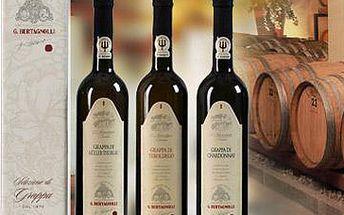 499 Kč za láhev Grappy Trentina G. Bertagnolli v dárkovém balení. Vzácná vinná pálenka ze severu Itálie. Na výběr TŘI druhy. Zákonem chráněná italská pálenka Grappa Trentina G. Bertagnolli vznikla destilací čerstvých a křehkých výlisků nejlepšího hroznového vína. Vy si můžete s dnešním kupónem vybrat rovnou ze tří druhů tohoto jedinečného nápoje, který bude obsažen v lahvi o objemu 0,7 l a krásné dárkové kazetě. Italskou specialitu vám dodává firma Bevande. Sleva 38 %!