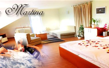 Pobyt pro dva na tři dny v krásném apartmánu s polopenzí, vířivkou a saunou v soukromí! Venkovní bazén, terasa s krbem a lehátky k dispozici! Zajištění výletů na řece!