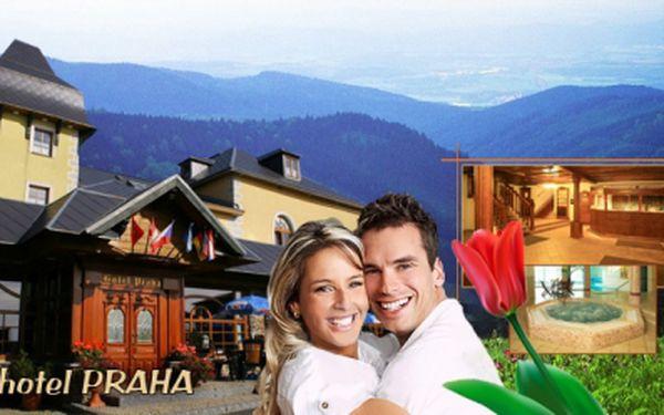TŘI DNY v hotelu Praha*** PRO DVA za 2999 Kč! V ceně POLOPENZE, neomezený vstup do BAZÉNU s vířivkou, sauna, Božídarský večer, BOWLING a láhev značkového vína!