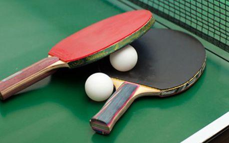 1 HODINA PING-PONGU + půjčení vybavení Hodinový pronájem ping-pongového stolu společně se zapůjčením pálek a míčku pro dva. Ideální sport pro aprílové počasí - umístění v městské hale.