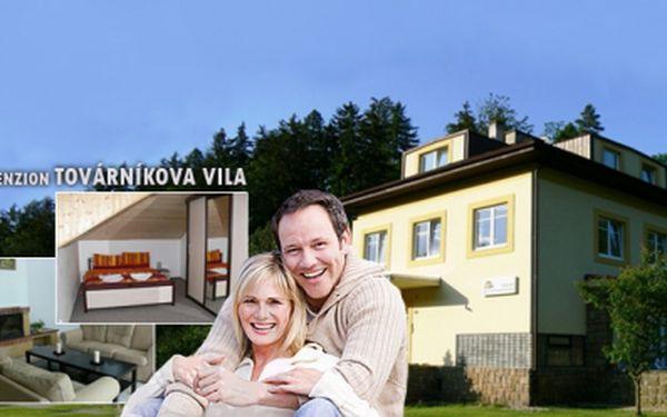 Užijte si dovolenou v Penzionu Továrníkova Vila! V ceně 935 Kč je zahrnuto ubytování pro 2 osoby na 3 dny! Navíc 15% sleva na vstup do bazénu v Rychnově nad Kněžnou!