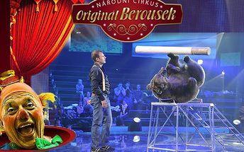 Sleva i na víkendové představení Národního Cirkusu Originál Berousek v novém turné v roce 2012 v Plzni! Dospělý a 1 dítě ušetří o víkendu 110Kč, ve všední den 150Kč!