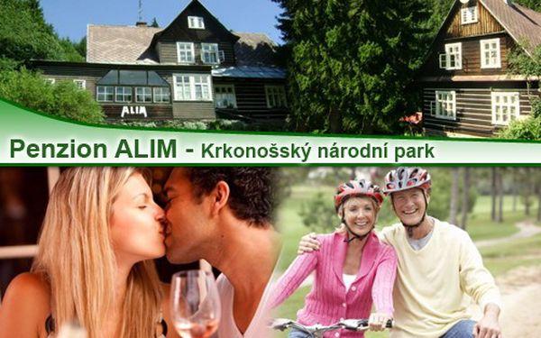 Jen 1110 za ubytování pro 2 dospělé osoby na 3 dny (2 noci) v penzionu ALIM ve Strážném v prostředí KRNAPu. Snídaně, večeře, grilování, víno.... Platnost do října 2012.