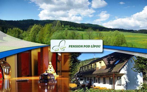 Báječných 1850 Kč za ubytování pro 2 osoby na 3 dny v apartmánu s polopenzí v Pensionu Pod Lípou v Beskydech!!! Vychutnejte si malebné prostředí slezských Beskyd!