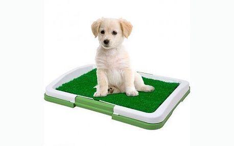 Domácí toaleta pro psy. Již nemusíte se svými zvířecími kamarády chodit pořád ven! Nyní za 289 včetně poštovného!