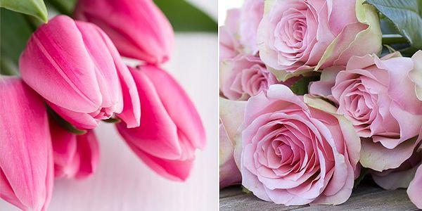 Nádherná kytice 19 tulipánů nebo 15 červených růží za 349 Kč. Rozvoz zdarma po Praze 1, 2, 3. Potěšte svou lásku. V květinovém servisu můžete zdarma přidat i váš zamilovaný vzkaz.
