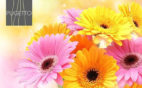 Nádherná kytice gerber ve 3 velikostech od 294 Kč. Originální dárek ke dni matek. Barevně sladěná a bohatě zdobená zelení, dárek který potěší kteroukoliv ženu pod sluncem se 40% slevou.