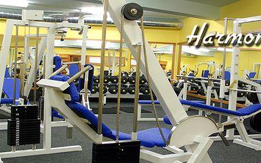 Výhodná permanentka na 20 vstupů do fitness centra Harmonie, platnost jeden rok!