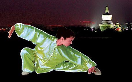 490 Kč za Letní kurz Tai-či pro úplné začátečníky. Principy, filozofie a Vaše zdraví. Stres a vyčerpání způsobují předčasné stárnutí, udržte je na uzdě a položte základy Vašemu Kung-fu pod vedením mistryně Zhai Jun, nyní s 51% slevou.