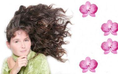 Nový účes, barva, melír nebo trvalá a to vše za super cenu a pro všechny délky vlasů!