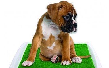 Toaleta pro psy Potty Pad usnadní vzájemné soužití. Ideální pro štěňata a menší rasy!