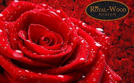 Pravá kolumbijská, 80 cm růže v centru Prahy za pouhých 39 Kč. Obdarujte své blízké jednou nebo hned celou kyticí nádherných růží s 61% slevou.