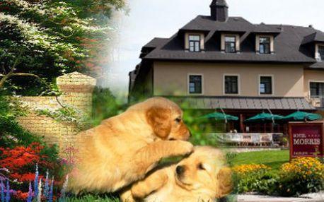 RELAXACE NA SLUNCI - 6 denní odpočinkový pobyt pro 2 osoby (vhodné pro rodiny s dětmi, 1x DÍTĚ ZDARMA) platnost do 16.12.2012!, s výlety a WELLNESS službami v Golf Hotelu Morris**** Mariánské Lázně