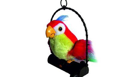 Pouhých 299 Kč za mluvícího papouška, který zopakuje vše, co řeknete! Super cena za úžasný dárek pro vaše děti!