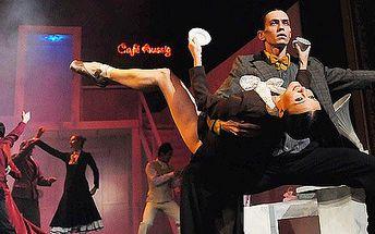 Vstupenka do Ústeckého divadla na taneční představení Café Aussig. Jedinečné zpracování slavné francouzské divadelní hry Tančírna!