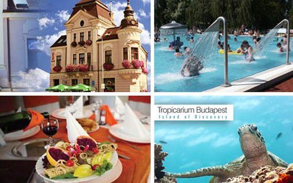 Nádherný nový penzion v historickém centru Komárna. Pobyt pro dva, polopenze, výlet do Budapešti, návštěva Tropicaria