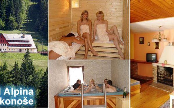 3 denní pobyt v hotelu Alpina Špindlerův Mlýn pro dva s polopenzí jen 100 metrů od lanovky Hromovka. Super turistické podmínky, fascinující panorama Krkonoš. Snídaně, večeře, privátní sauna, whirlpool,bobová dráha,lanovka i výletní vláček.