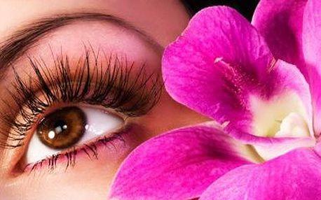 73% SLEVA!!! Okouzlete hlubokým pohledem perfektně upravených očí! Za pouhých 99 Kč získáte barvení a úpravu obočí společně s nabarvením řas! Celkové trvání procedury v salonu v centru města jen 35 minut!
