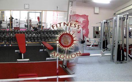 Výhodná permanentka na 10 vstupů do fitness centra! Permanentka je přenosná!
