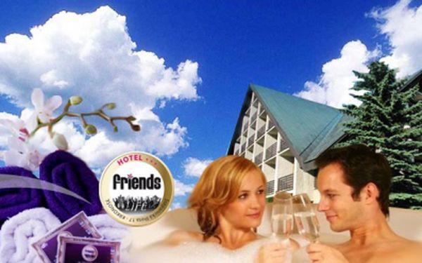 Pobyt na tři nebo šest dní pro dva v krkonoších v hotelu friends*** již od 1090 kč! V ceně polopenze, sauna, vířivka a welcome drink! Až 68% sleva!