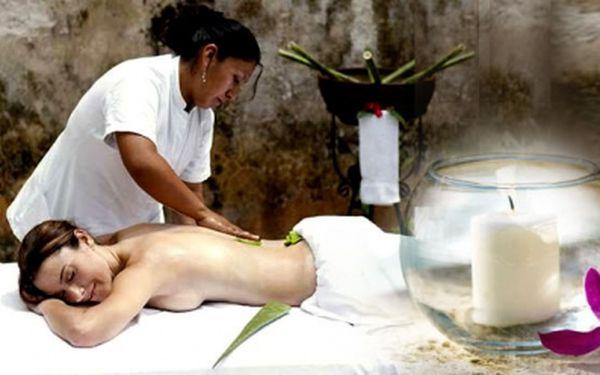 Báječných 250 Kč za hodinovou relaxaci v podobě Havajské masáže Lomi Lomi! Užijte si luxusní proceruduru, která je označována za perlu mezi masážemi!