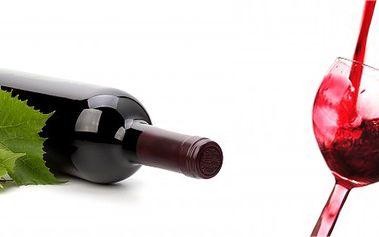 Aerator pro provzdušnění vína! Nejlépe víno chutná provzdušněné!