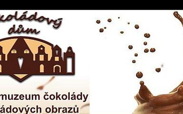 Dopřej si nevšední smyslový zážitek. Nalaď své chuťové buňky a nauč se rozpoznávat různé odrůdy kakaových bobů. Degustace čokolády pro veřejnost za 199 Kč.