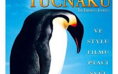 199 Kč za kolekci 7 DVD – NEJKRÁSNĚJŠÍ filmy o zvířatech, skutečný příběh o horolezcích, obrazový epos s úžasnou hudbou a zkoumání planety Země z hmyzí perspektivy