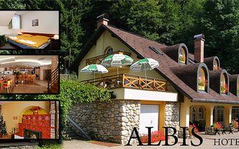 3 - denní pobyt s polopenzí v krásném hotelu Albis*** v Krkonoších!