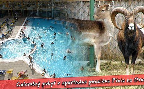 Pobyt pro dvě osoby za 754 Kč na 3 dny v Penzionu pinie. Krásná oravská příroda, zvířecí obora přímo u penzionu, možnosti koupání v okolí. Kouzelný pobyt pro dospělé i děti.