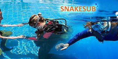 Snakesub