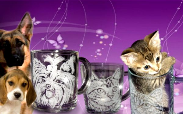 Nechejte si zvěčnit svého mazlíčka a pomozte zvířecímu útulku! Hrnek na přání ARTCAT za 189 Kč místo původních 369 Kč!