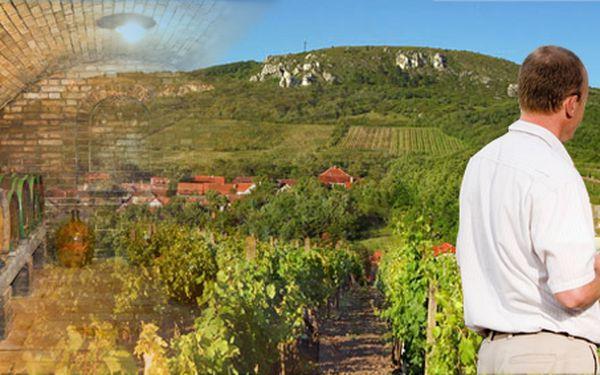 Týdenní vinařský pobyt pro dva s degustací vín v malebném penzionu Schwarz!