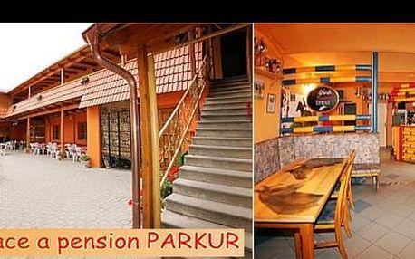 Skvělá dovolená pro milovníky koní – ubytování na tři noci pro dvě osoby v Horšovském Týnu v penzionu Parkur, ke kterému náleží i stáje a jezdecký areál, se slevou 30 %!